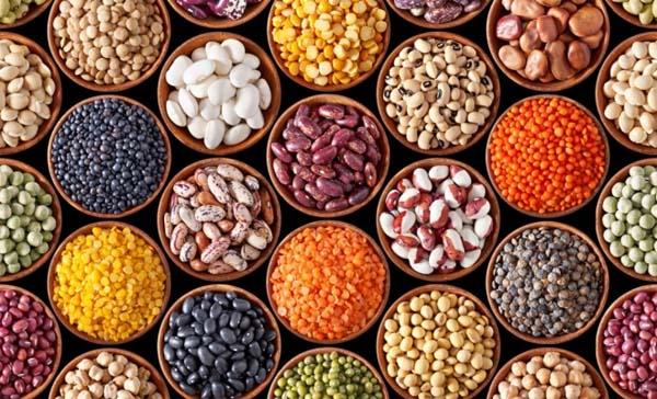 bonen bron van eiwitten proteïnen